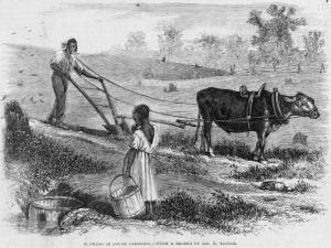 plowing in south carolina